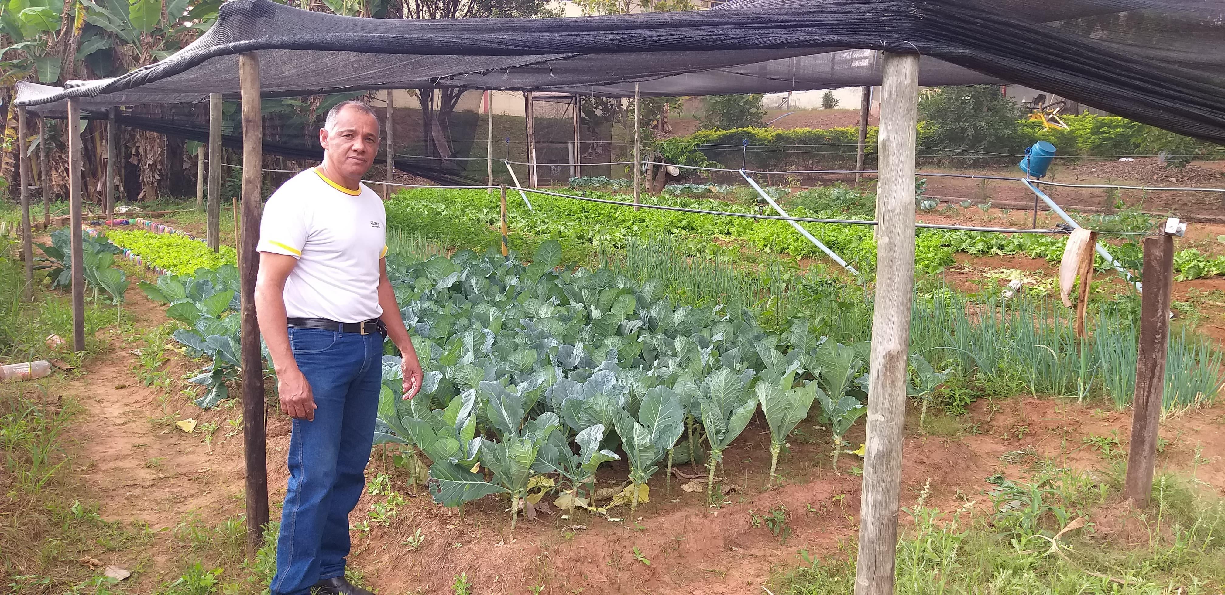 Escola Hélio Faria transforma local ocioso em horta