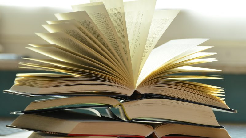 CRÔNICA: Mais livros, mais livros e mais livros