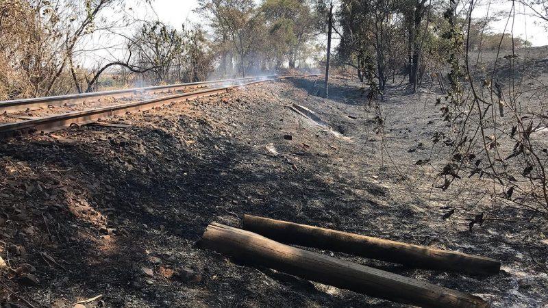 Moradores sofrem com constantes queimadas nesta época do ano