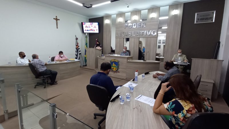 Vereadores indicam programa para criação de hortas comunitárias em terrenos do município