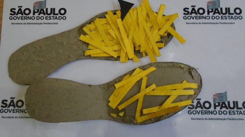 K4, placas de celulares, chips e estanho: materiais são apreendidos na PII de Lavínia